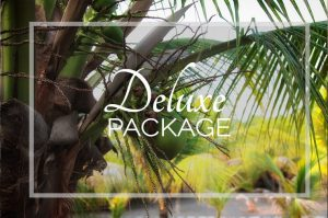 "The ""Deluxe Package"" is perfect for clients looking for a superb culinary experience, with all meals prepared by ""Chef David""."